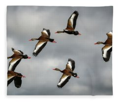 Black Bellied Whistling Ducks Fleece Blanket