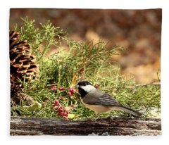 Black-capped Chickadee In Winter Fleece Blanket