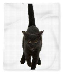 Black Cat On The Run Fleece Blanket