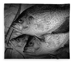Black Crappie Panfish With Fish Filet Knife In Black And White Fleece Blanket