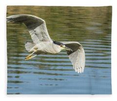 Black-crowed Night Heron 5603-112617-2cr Fleece Blanket