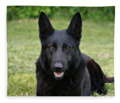Black German Shepherd Dog II Fleece Blanket