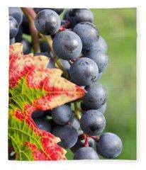 Black Grapes On The Vine Fleece Blanket