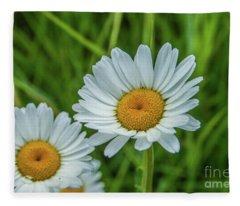 Black-headed Daisy's Fleece Blanket