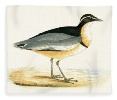Black Headed Plover Fleece Blanket