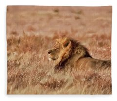 Black-maned Lion Of The Kalahari Waiting Fleece Blanket