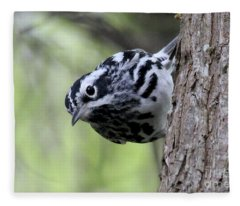 Black-n-white Warbler Fleece Blanket