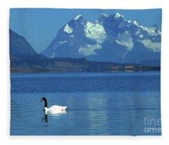 Black Necked Swan On Last Hope Sound Chile Fleece Blanket