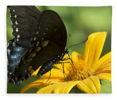 Black Swallowtail Drinking Fleece Blanket