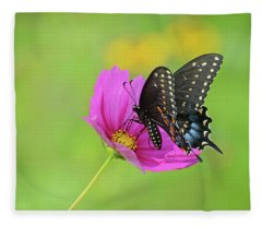 Black Swallowtail On A Cosmos Fleece Blanket