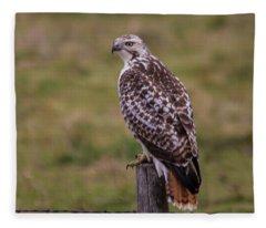 Bloody Talons  Fleece Blanket