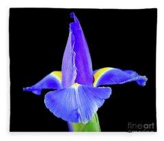 Blooming Iris 1318-1 Fleece Blanket