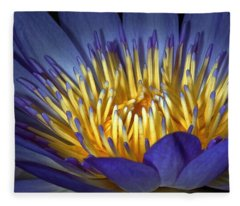 Blue And Yellow Fleece Blanket