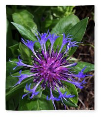 Blue As A Cornflower In The Meadow Fleece Blanket