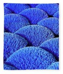 Blue Asia Sound Fleece Blanket