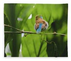 Blue Bird Has An Itch Fleece Blanket
