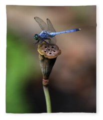 Blue Dragonfly Dancer Fleece Blanket