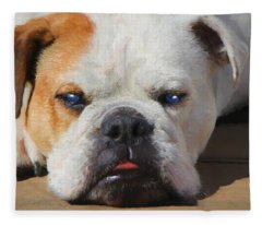 Blue-eyed English Bulldog - Painting Fleece Blanket