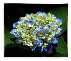 Blue Hydrangea Onstage 2620 H_2 Fleece Blanket