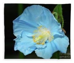 Blue Is Your Color Fleece Blanket