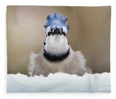 Blue Jay In Snow Fleece Blanket
