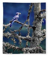 Blue Jay Mountain Fleece Blanket