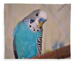 Blue Parakeet Fleece Blanket