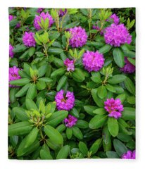 Blue Ridge Mountains Rhododendron Blooming Fleece Blanket