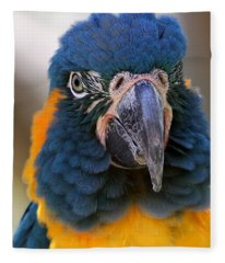 Blue-throated Macaw Close-up Fleece Blanket