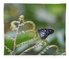 Blue Tiger On A Farn Fleece Blanket