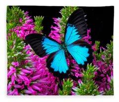 Blue Wings On Pink Flowers Fleece Blanket