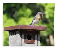 Bluebird Breakfast Feeding Fleece Blanket
