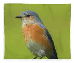 Bluebird Digital Art Fleece Blanket
