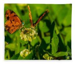 Bluehead Butterfly Fleece Blanket