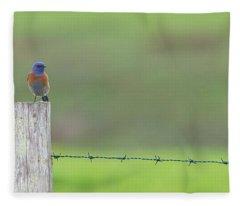 Blues  Fleece Blanket