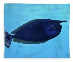 Bluespine Unicorn Fish Fleece Blanket