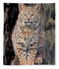 Bobcat Felis Rufus Captive Fleece Blanket