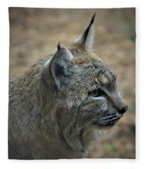 Bobcat In Profile Fleece Blanket