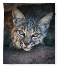 Bobcat Stare Fleece Blanket