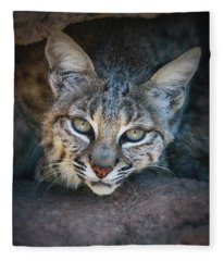 Bobcat Stare Fleece Blanket