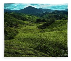 Boh Tea Plantation In The Cameron Highlands, Pahang, Malaysia, Southeast Asia Fleece Blanket