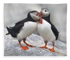 Bonded And Banded Fleece Blanket