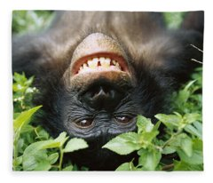 Bonobo Smiling Fleece Blanket