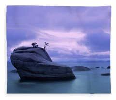 Bonsai Rock Blues By Brad Scott Fleece Blanket