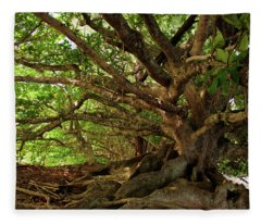 Branches And Roots Fleece Blanket