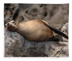 Break Time Fleece Blanket