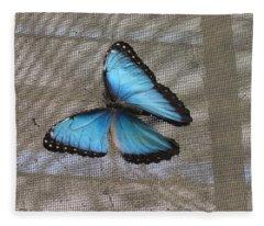 Bright Blue Butterfly Fleece Blanket