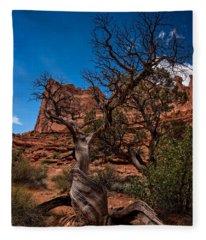 Bristlecone On Park Avenue Fleece Blanket