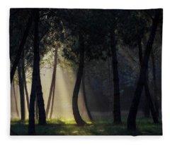 Broceliand's Light Fleece Blanket