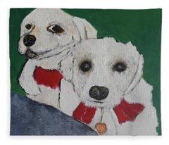 Brothers Fleece Blanket